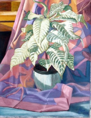 2004-potted-silk-copy