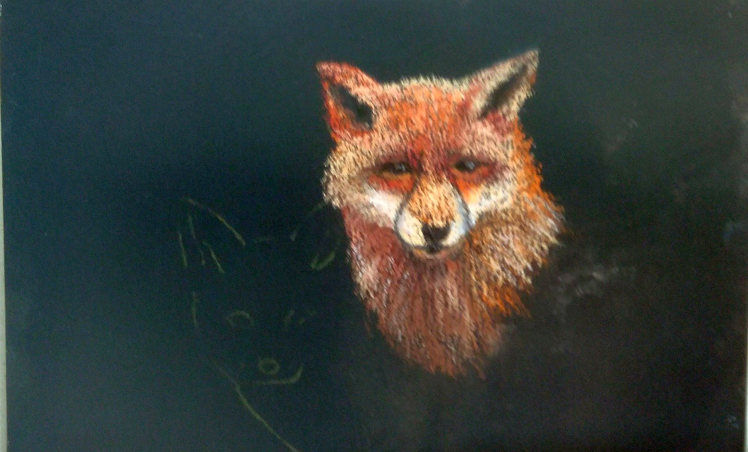 Foxy stage one