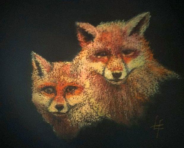 rec foxes 3